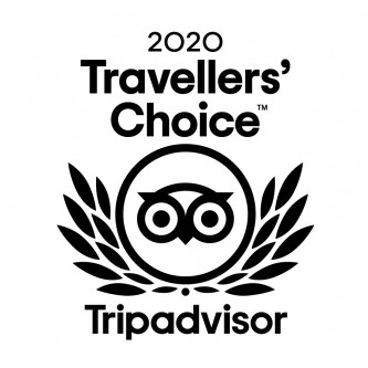 2020 Tripadvisor Travellers Choice Award